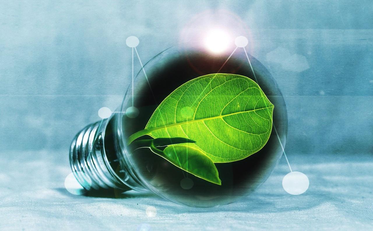 Préparer l'après Covid-19 et réduire la dichotomie entre le monde politique et le monde économique, pour promouvoir de façon soutenable la transition écologique